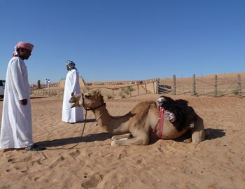 Oman_Safari_Desert_Camp_Wahiba-Wuste_Heideker-Reisen